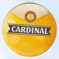 Cardinal костер<br /> Страница А